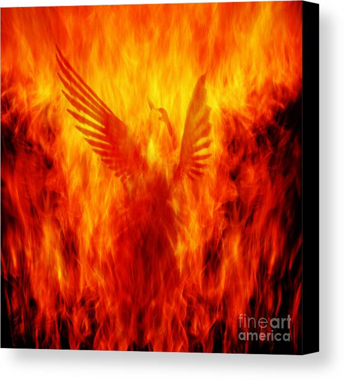 Phoenix Canvas Print featuring the photograph Phoenix Rising by Andrew Paranavitana