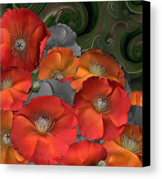 Poppy Canvas Print featuring the photograph Poppy by Stan Bowman