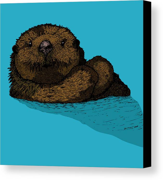 Drawing Canvas Print featuring the drawing Sea Otter - Full Color by Karl Addison
