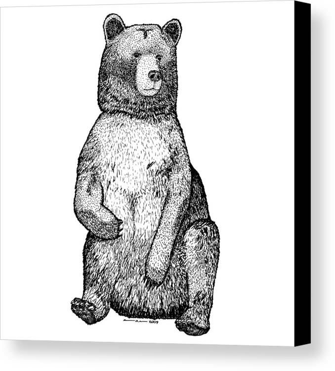 Drawing Canvas Print featuring the drawing Sitting Bear by Karl Addison