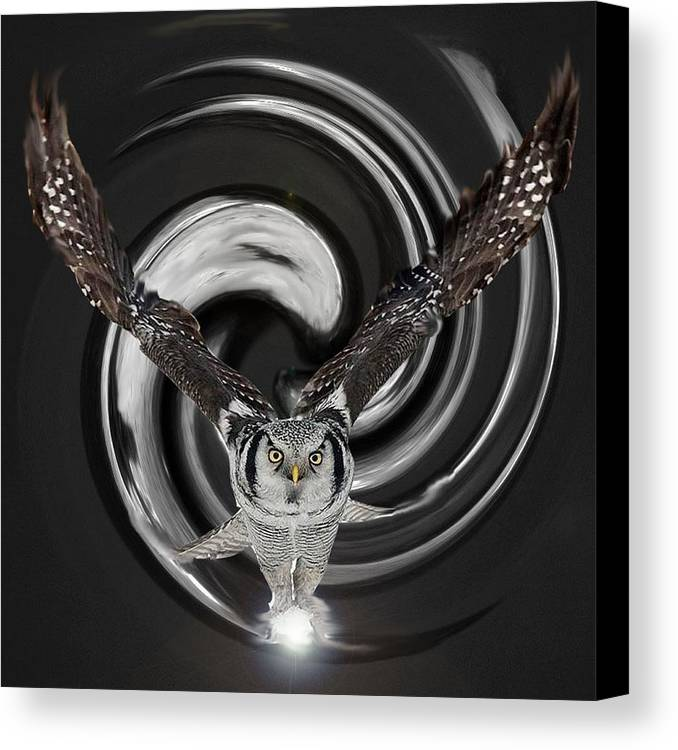 Owl Canvas Print featuring the digital art The Eyes Of Nature Are Watching You by Bianca Van Heumen