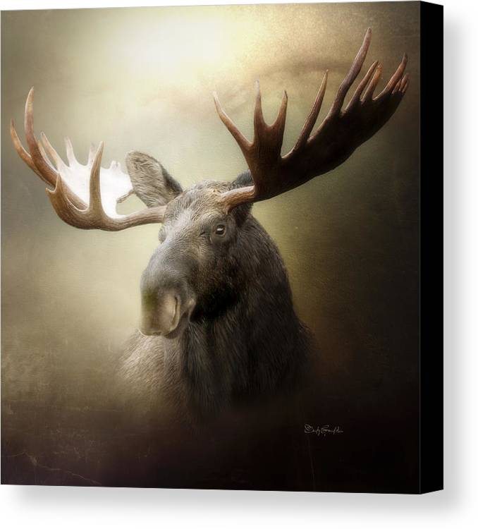 Animal Canvas Print featuring the digital art The King by Cindy Grundsten