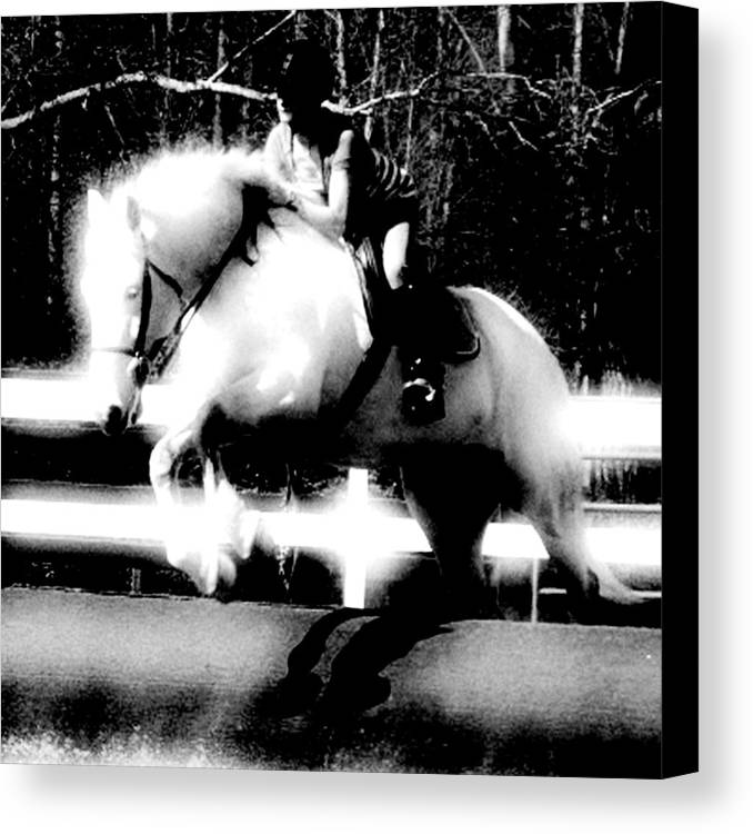 Horse Canvas Print featuring the photograph The White Knight by Donna Thomas