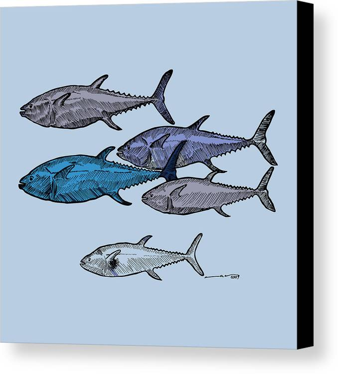 Fish Canvas Print featuring the drawing Tuna School Of Fish by Karl Addison