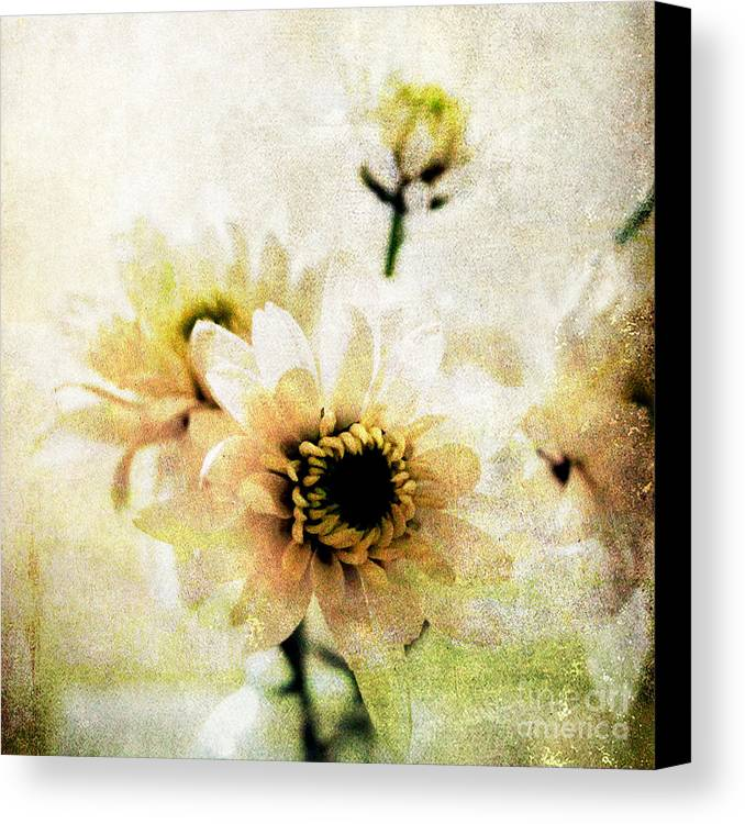 Flowers Canvas Print featuring the mixed media White Flowers by Linda Woods