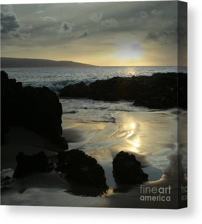 Aloha Canvas Print featuring the photograph Dare To Live Your Dream by Sharon Mau