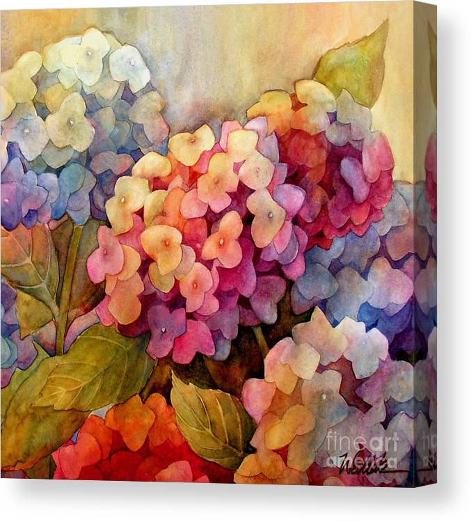 Hydrangeas Canvas Print featuring the painting Hydrangeas by Wendy Westlake