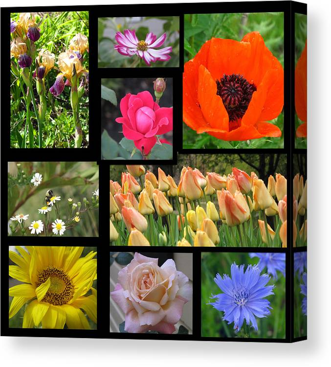 Collage Canvas Print featuring the photograph Floral Collage One by Barbara McDevitt