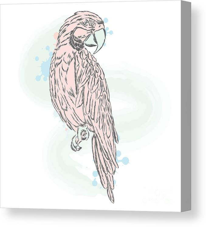 Serenity Canvas Print featuring the digital art Gentle Parrot Vector. Trendy Shades by Vitaly Grin