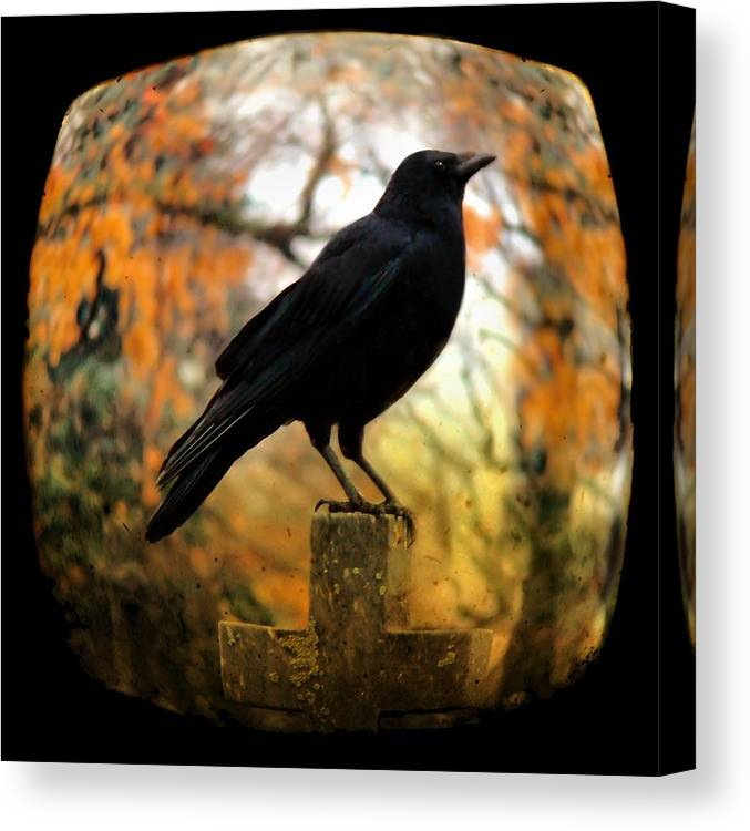 Fish Eye View Canvas Print featuring the photograph Gothic Fish Eye by Gothicrow Images