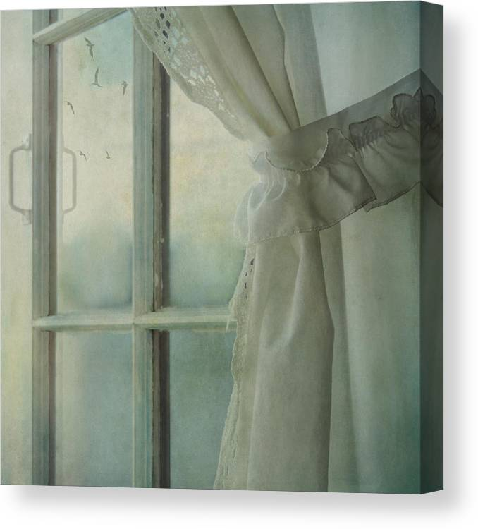 Sally Banfill Canvas Print featuring the photograph In The Distance by Sally Banfill