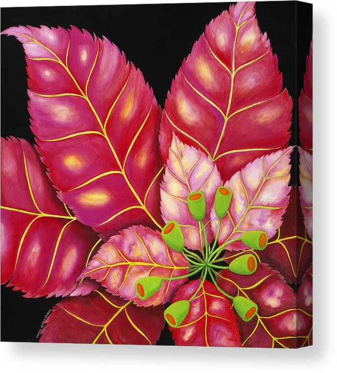 Acrylic Canvas Print featuring the painting Poinsettia by Carol Sabo