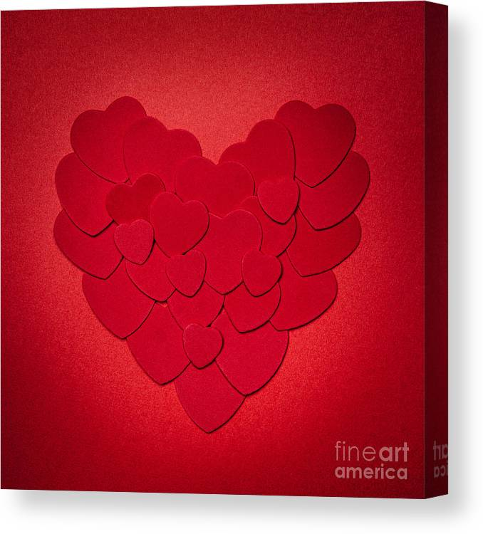 Heart Canvas Print featuring the photograph Red Heart by Elena Elisseeva