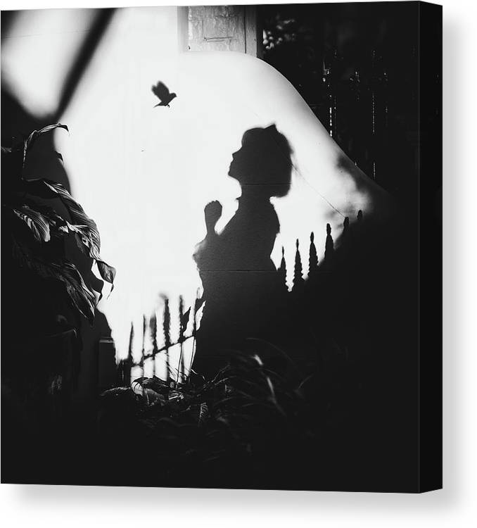 Conceptual Canvas Print featuring the photograph Shadows On The Wall by Terry F