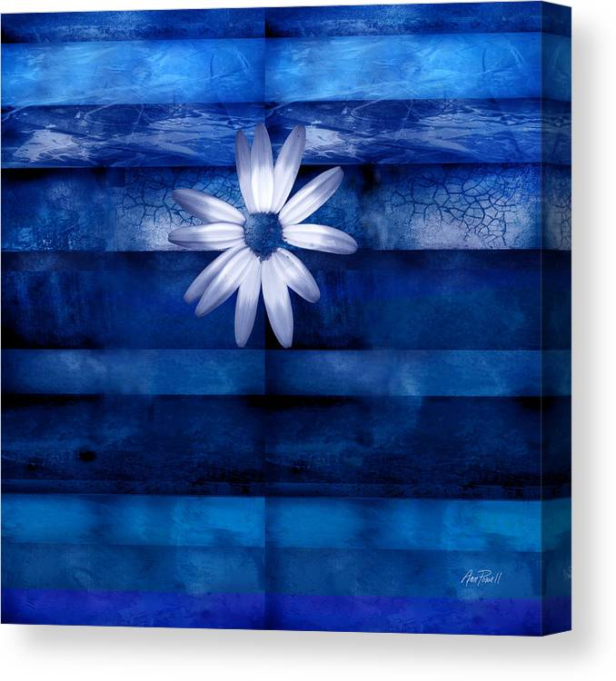 White Daisy On Blue Abstract Art Canvas Print