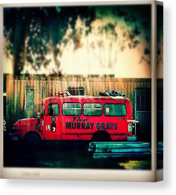 Old Canvas Print featuring the photograph Is This Murray Grays? #fcnphoto by Luke Fuda
