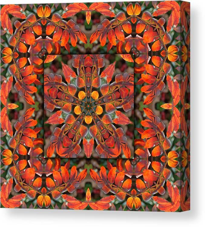 Sumac Canvas Print featuring the digital art Sumac Autumn Kaleidoscope by Francesa Miller
