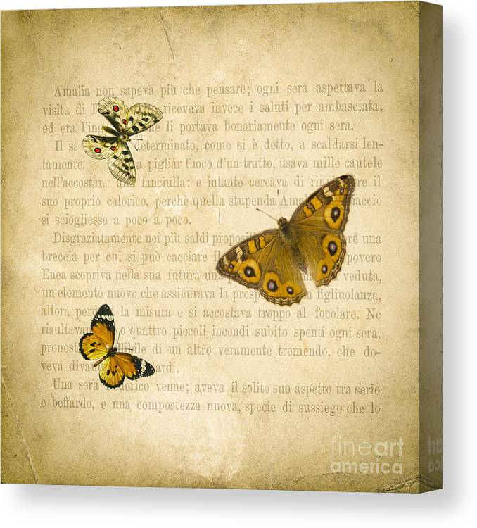 Aged Canvas Print featuring the digital art The Printed Page 1 by Jan Bickerton