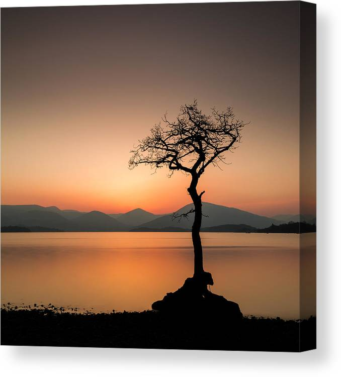 Landscape Canvas Print featuring the photograph Dreaming by Paul Grant Simpson