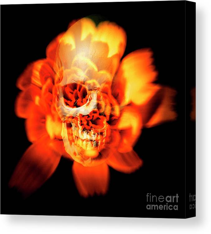 Halloween Canvas Print featuring the photograph Flower Skull by Jorgo Photography - Wall Art Gallery