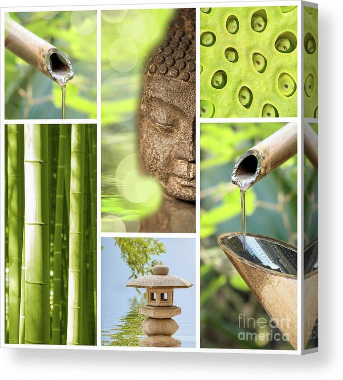 Buddha Canvas Print featuring the photograph Green Collage by Delphimages Photo Creations