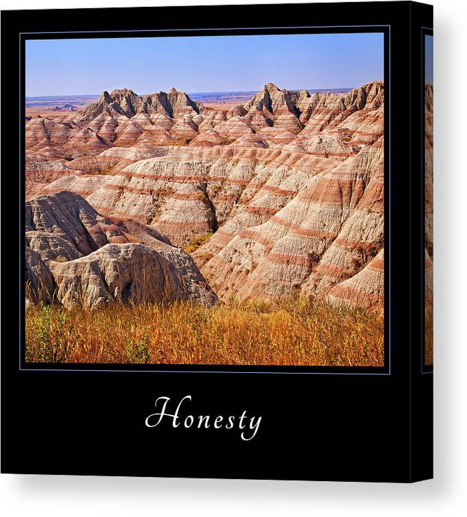 Inspiration Canvas Print featuring the photograph Honesty 1 by Mary Jo Allen