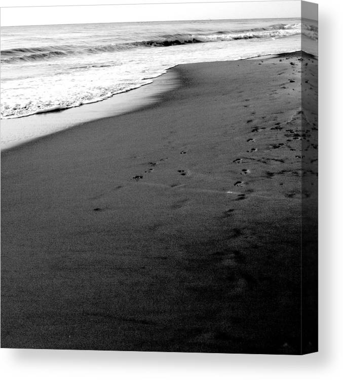 Photograph Canvas Print featuring the photograph In My Thoughts by Jean Macaluso
