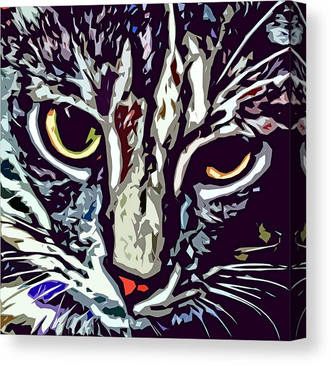 Cat Canvas Print featuring the photograph Face Of The Feline by David G Paul