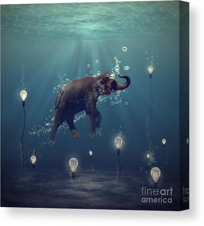 Elephant Canvas Print featuring the photograph The Dreamer by Martine Roch