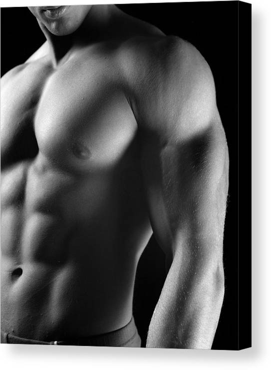 Male Canvas Print featuring the photograph Torso Of Model J by Dan Nelson