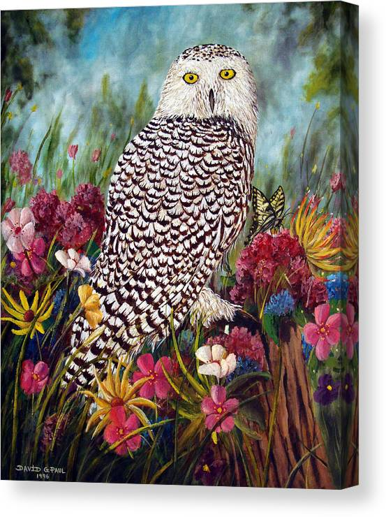 Owl Canvas Print featuring the painting Snowy Owl by David G Paul