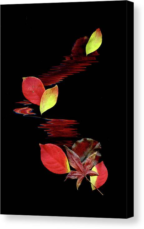 Abstract Art Canvas Print featuring the photograph Falling Leaves by Gerlinde Keating - Galleria GK Keating Associates Inc