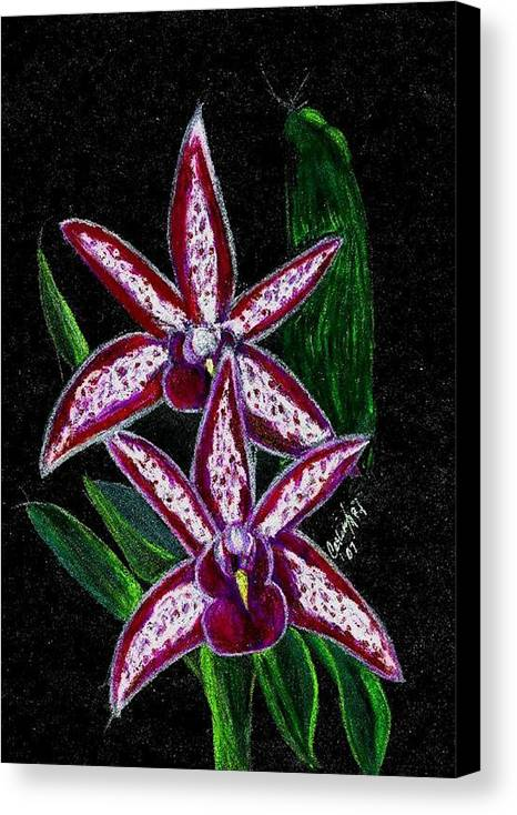 Flower Orchid Floral Reddish Purplish Canvas Print featuring the print Look At Me Against The Twinkling Sky by Carliss Mora