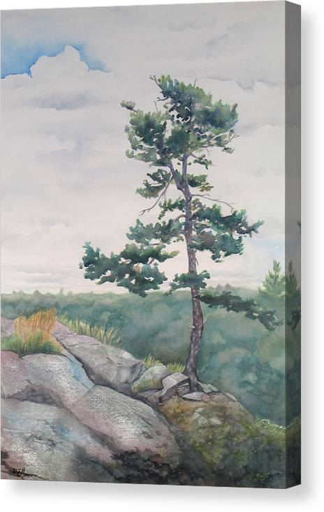 Tree Canvas Print featuring the painting Over The Shield by Debbie Homewood