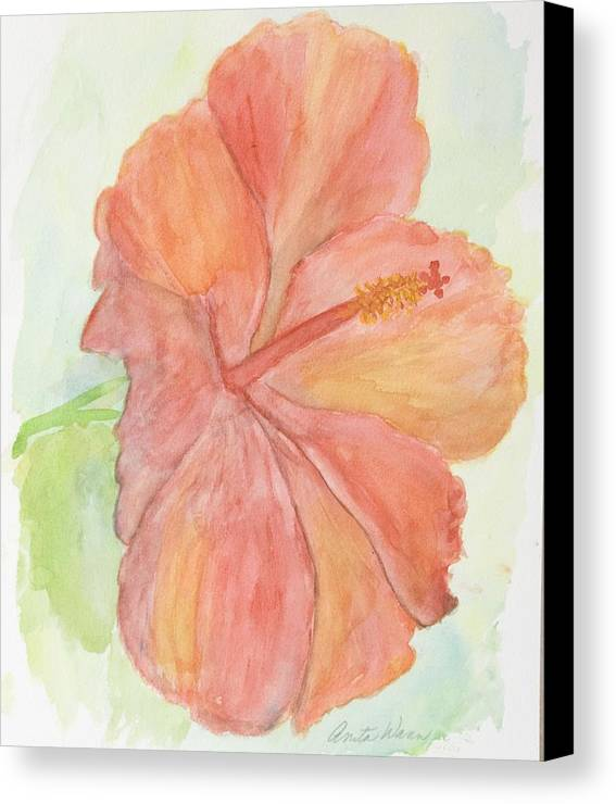 Flower Canvas Print featuring the painting Hibiscus by Anita Wann