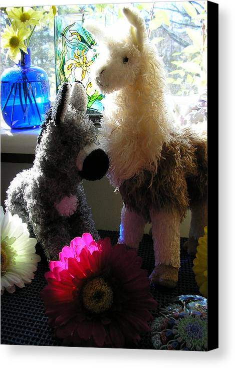 Stuffed Animals Canvas Print featuring the photograph Donkey Joti And Dali Llama by Christina Gardner
