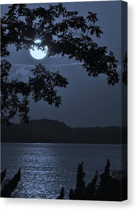 Background Canvas Print featuring the photograph Blue Bay - A Tropical Paradise, The Moon Glancing Thru The Leaves And Reflecting Off The Bay by William Bartholomew