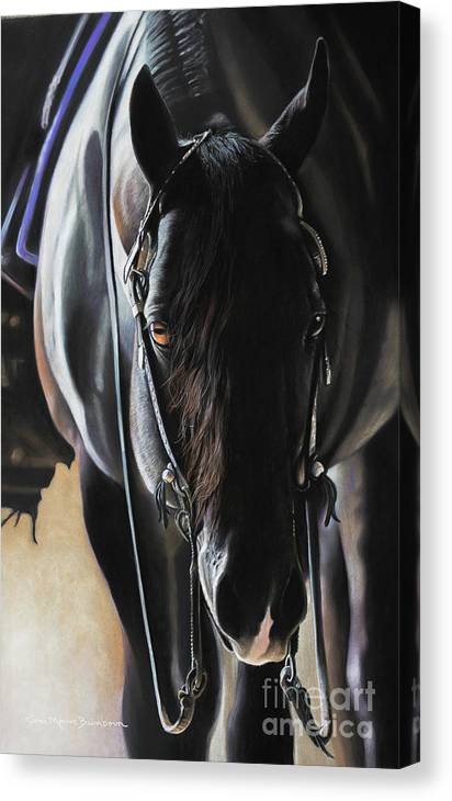 Aqha Canvas Print featuring the pastel Any Time...Any Place by Joni Beinborn
