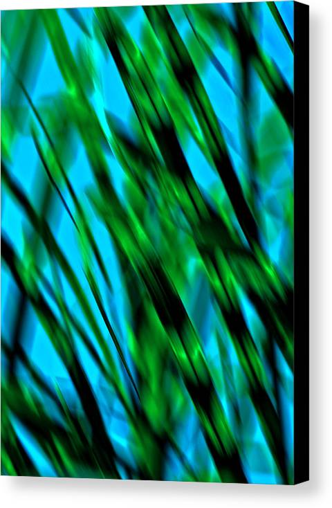 Abstract Canvas Print featuring the photograph Abstract Green Grass by Mary Anne Williams