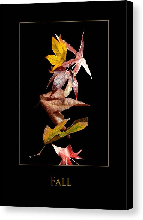 Canvas Print featuring the photograph Fall by Richard Gordon