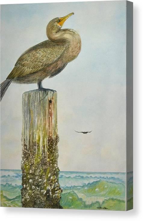 Cormorant Canvas Print featuring the painting Vigilance by Hannah Boynton