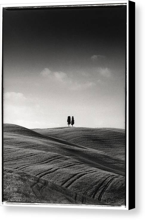 Tuscany Canvas Print featuring the photograph Tuscany Twin Cypresses by Michael Hudson