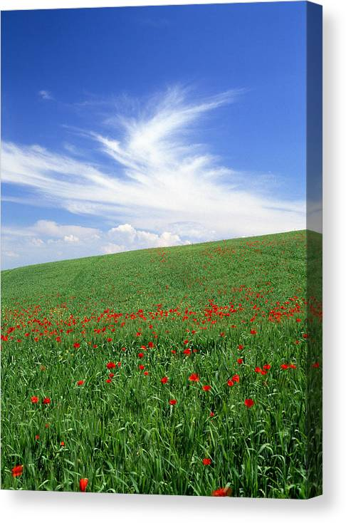 Tuscany Canvas Print featuring the photograph Tuscan Clouds by Michael Hudson