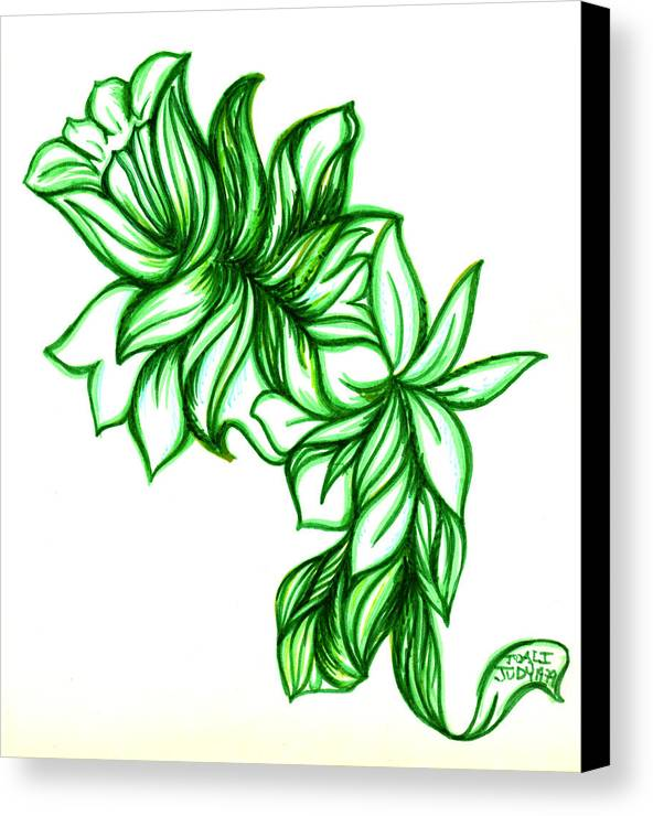 The Garden Of Eden Collection Canvas Print featuring the drawing Green Leaves by Judith Herbert