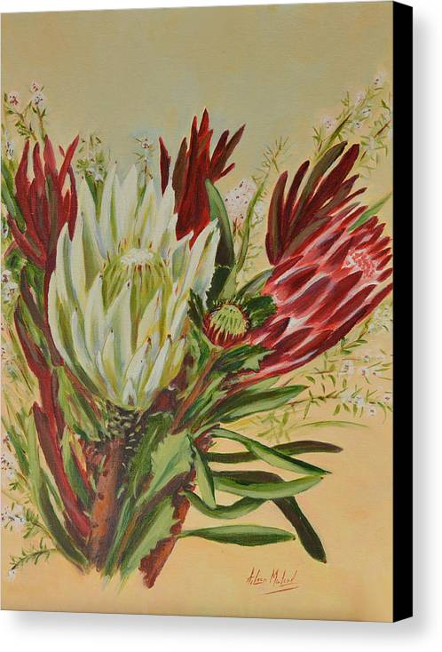 Floral Art Canvas Print featuring the painting Protea Bunch by Aileen McLeod
