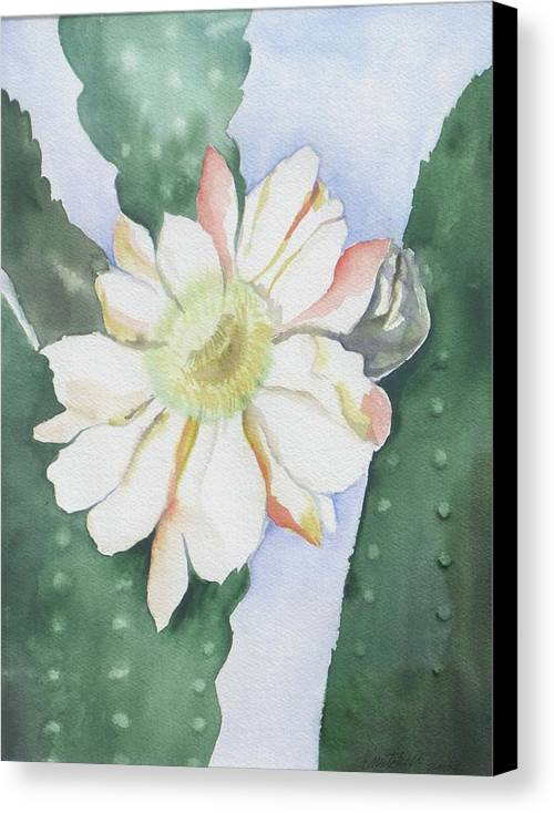 Cactus Flower Canvas Print featuring the painting Night Bloomers by Kathy Mitchell