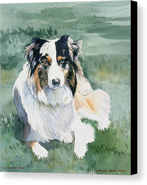 Portrait Canvas Print featuring the painting Cisco by Eileen Hale