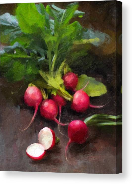 Radishes Canvas Print featuring the painting Fresh Radishes by Robert Papp