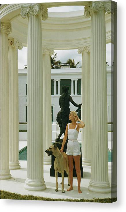 Pets Canvas Print featuring the photograph C. Z. Guest by Slim Aarons