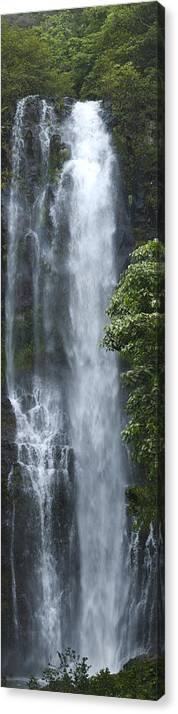 Wailua Falls Canvas Print featuring the photograph Wailua Falls by Richard Henne